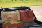 AGRICULTURA FAMILIAR: SÃO CARLOS AUMENTA INVESTIMENTO POR MEIO DO PROGRAMA DE AQUISIÇÃO DE ALIMENTOS